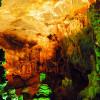 Đến động Tiên chùa Linh Cốc khi đi du lịch Tam Cốc Bích Động