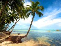 Khám phá vẻ đẹp tuyệt diệu của bãi sao Phú Quốc
